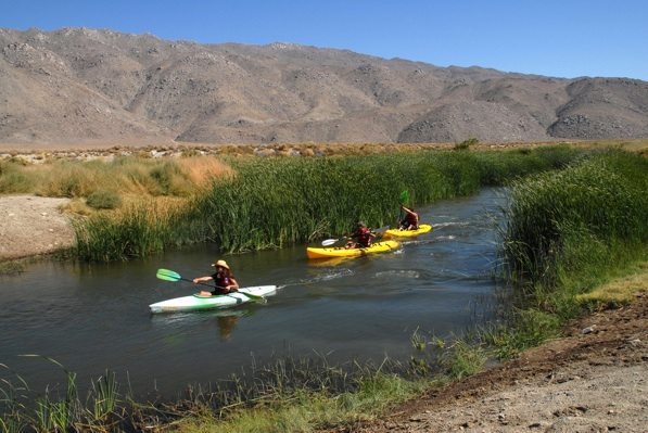 Kayakers take advantage of the Lower Owens River restoration area