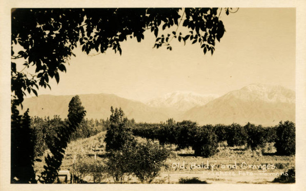 Courtesy of Honnold Mudd Library Special Collections - City of Claremont History Collection