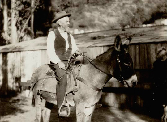 Wilbur Sturtevant on his donkey in 1893. Courtesy of the Sierra Madre Historical Archives Collection, Sierra Madre Public Library