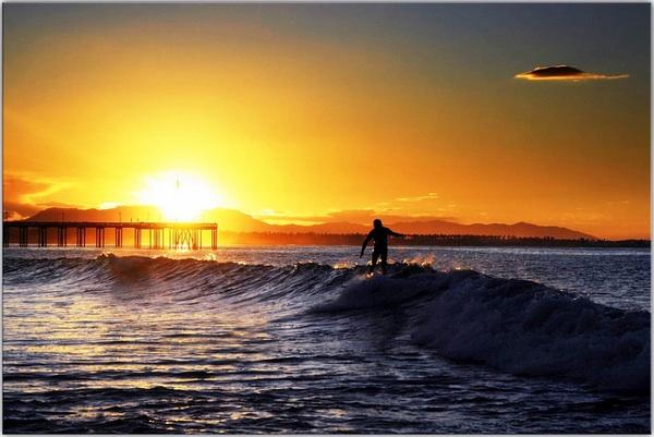 surfing-economy-california