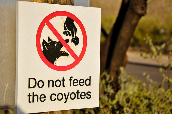 Good Advice at the Arizona Sonora Desert Museum | Creative Commons photo by Kevin Cochran