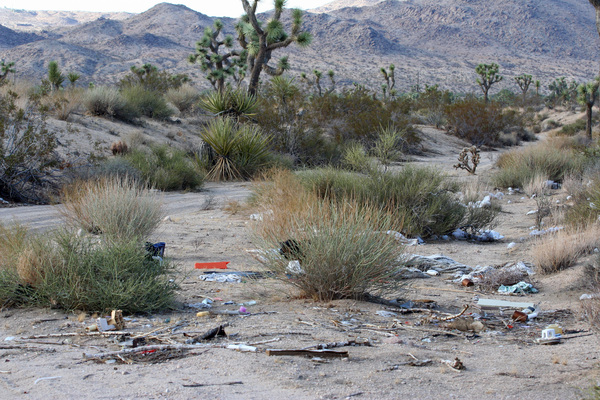 More-Trash-Desert-8-7-12-thumb-600x400-33785