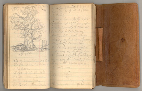 Yosemite Journal, 1872. John Muir Papers, Holt- Anderson Special Collections, University of the Pacific Library. ©1984, Muir-Hanna Trust.