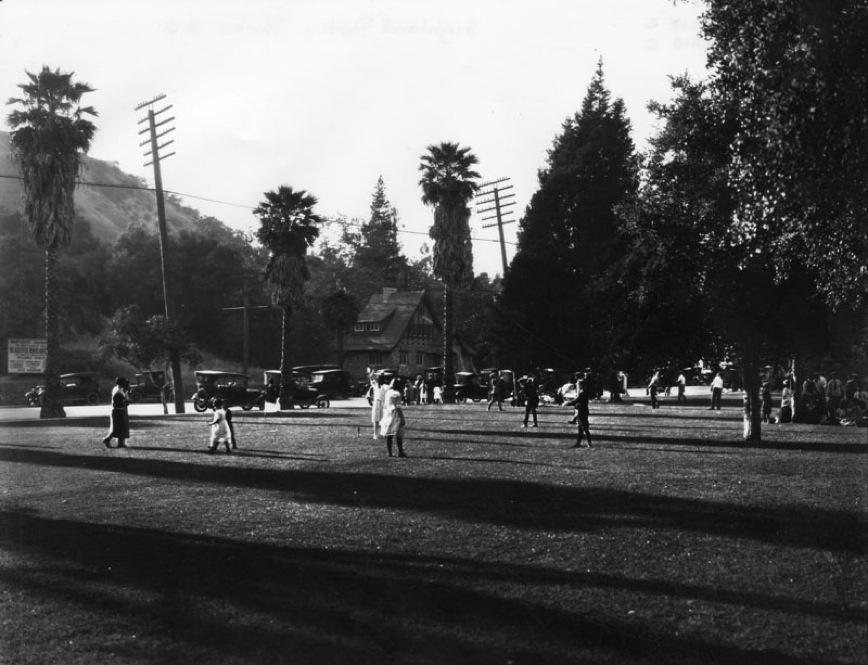 Sycamore Park 6