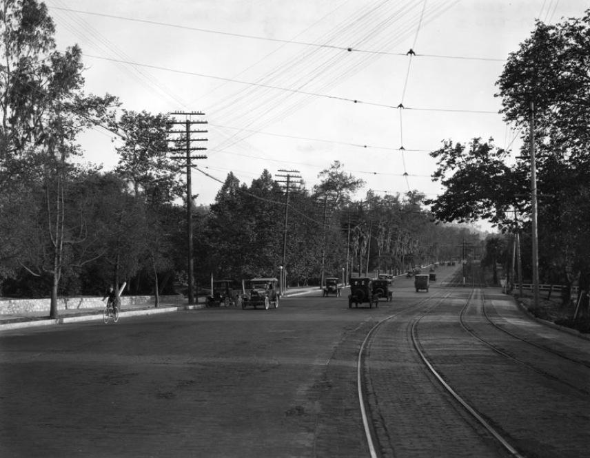 Sycamore Park 4