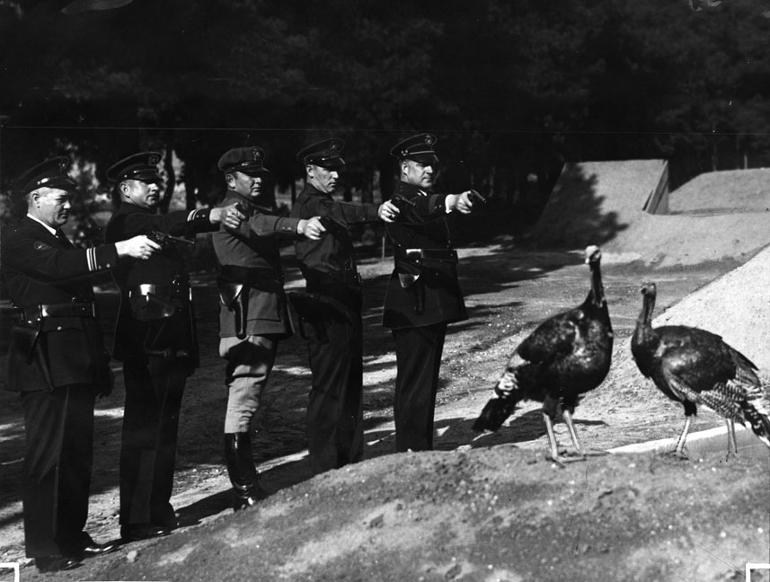 Officers aiming their pistols at a turkey
