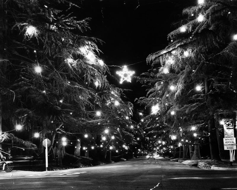 Christmas Tree Lane in 1960. Courtesy of the Herald-Examiner Collection - Los Angeles Public Library.
