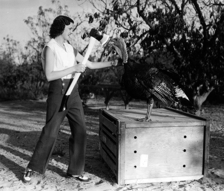 A turkey confronts a woman with an axe. Courtesy of the Security Pacific National Bank Collection, Los Angeles Public Library.