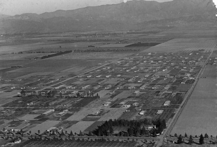 Aerial view of Weeks Poultry Colony, Canoga Park. Sherman Way is the tree-lined street in the foreground. (1927)