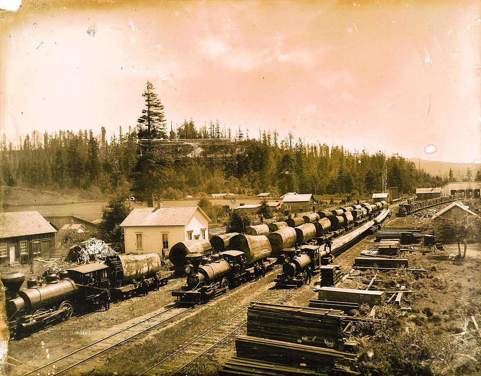 Redwood trains at Freshwater