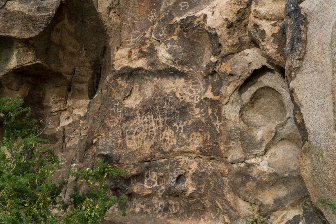 Painted Rock has a significant collection of prehistoric Native American petroglyphs. Photo: Kim Stringfellow.