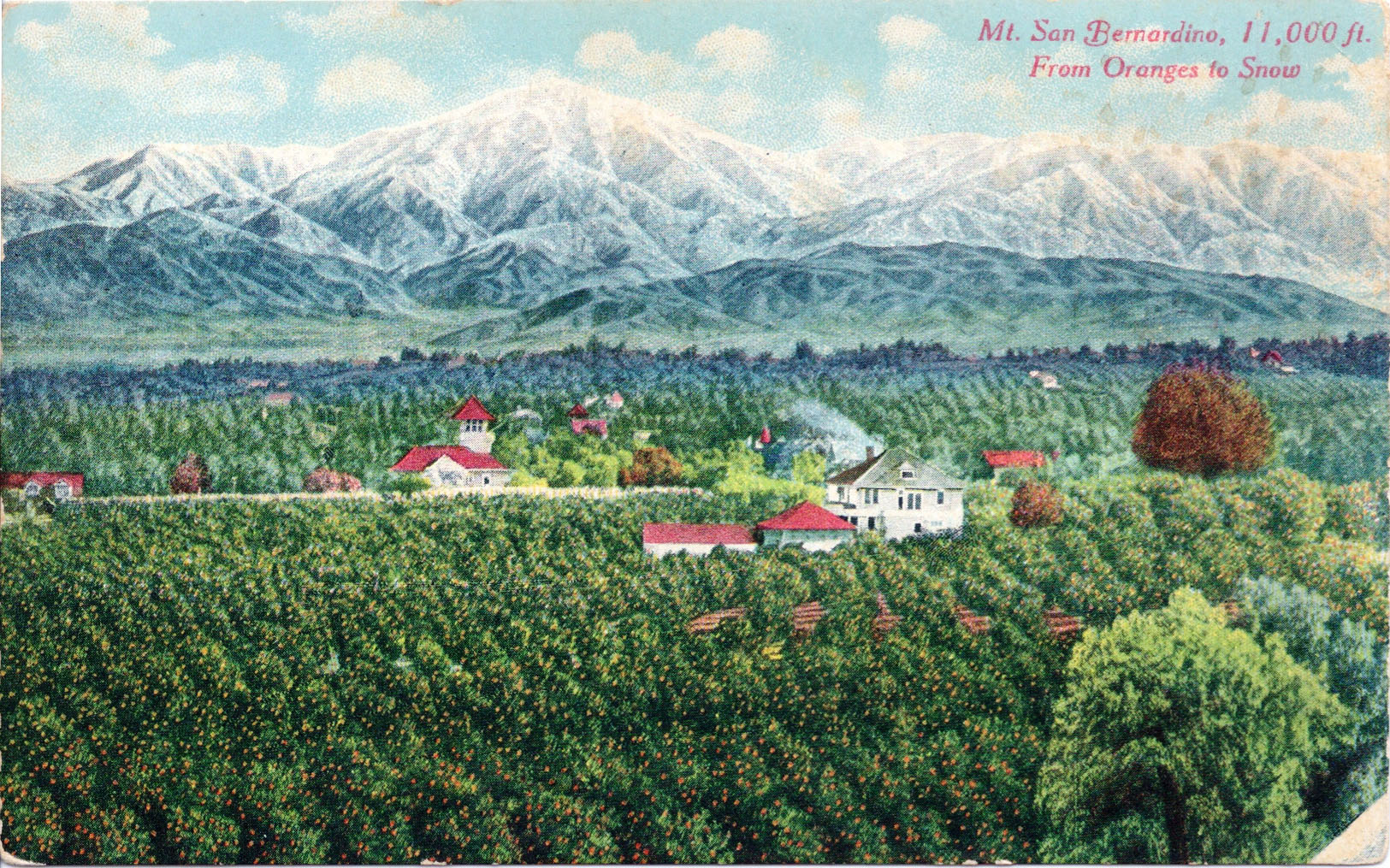 When Oranges Ruled the Inland Empire | KCET