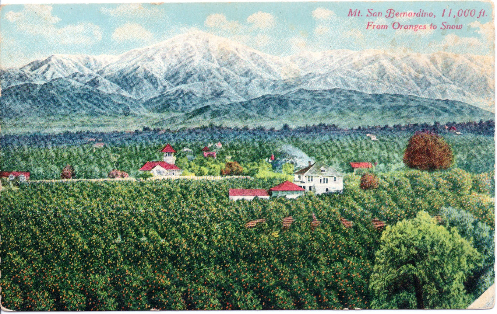 Regional boosters and promoters of Southern California's citrus industry oth loved images like this, in which snow-capped peaks frame orange groves. Courtesy of the David Boulé Collection.