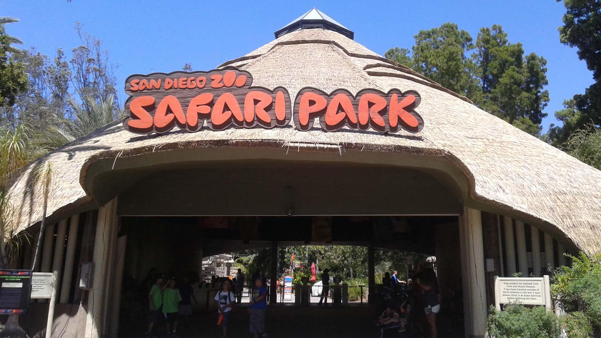 San Diego Zoo Safari Park | Sandi Hemmerlein