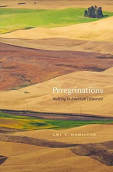 """Peregrinations,"" Amy T. Hamilton, University of Nevada Press"