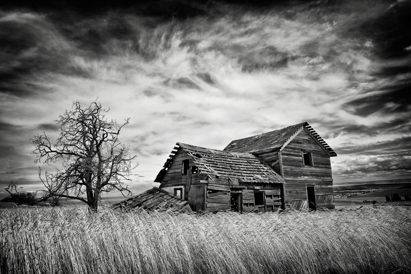 Farmhouse by Nyla James
