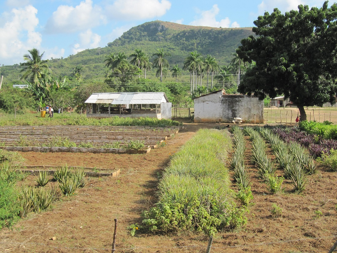 Rural Cuba