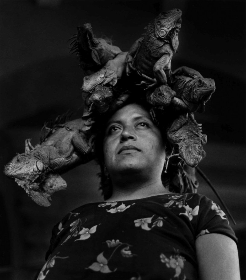 Nuestra Señora de Las Iguanas, Juchitán, Oaxaca, 1979 (Our Lady of the Iguanas, Juchitán, Oaxaca) Gelatin silver print 16 × 20 in.| © Graciela Iturbide - Graciela Iturbide exhibition PST LA/LA