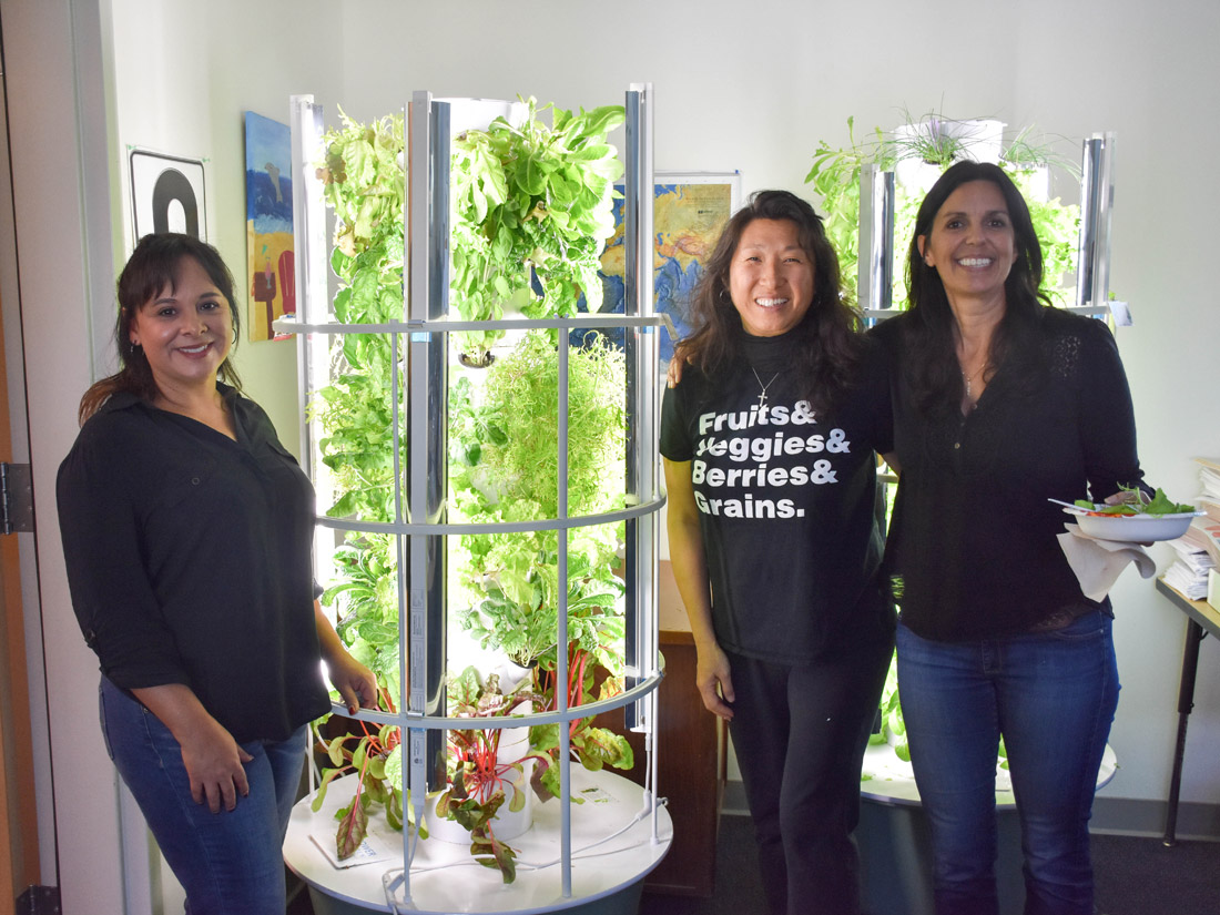 These Aeroponic Gardens Are Transforming Schools and Homeless ...