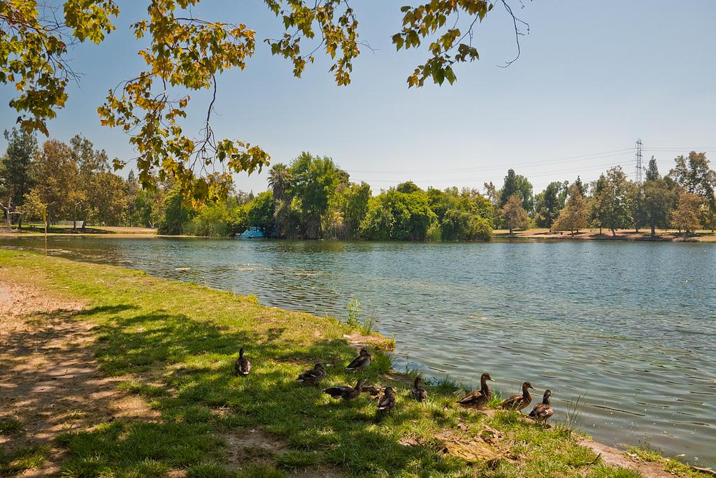 Whitter Narrows Lake.jpg
