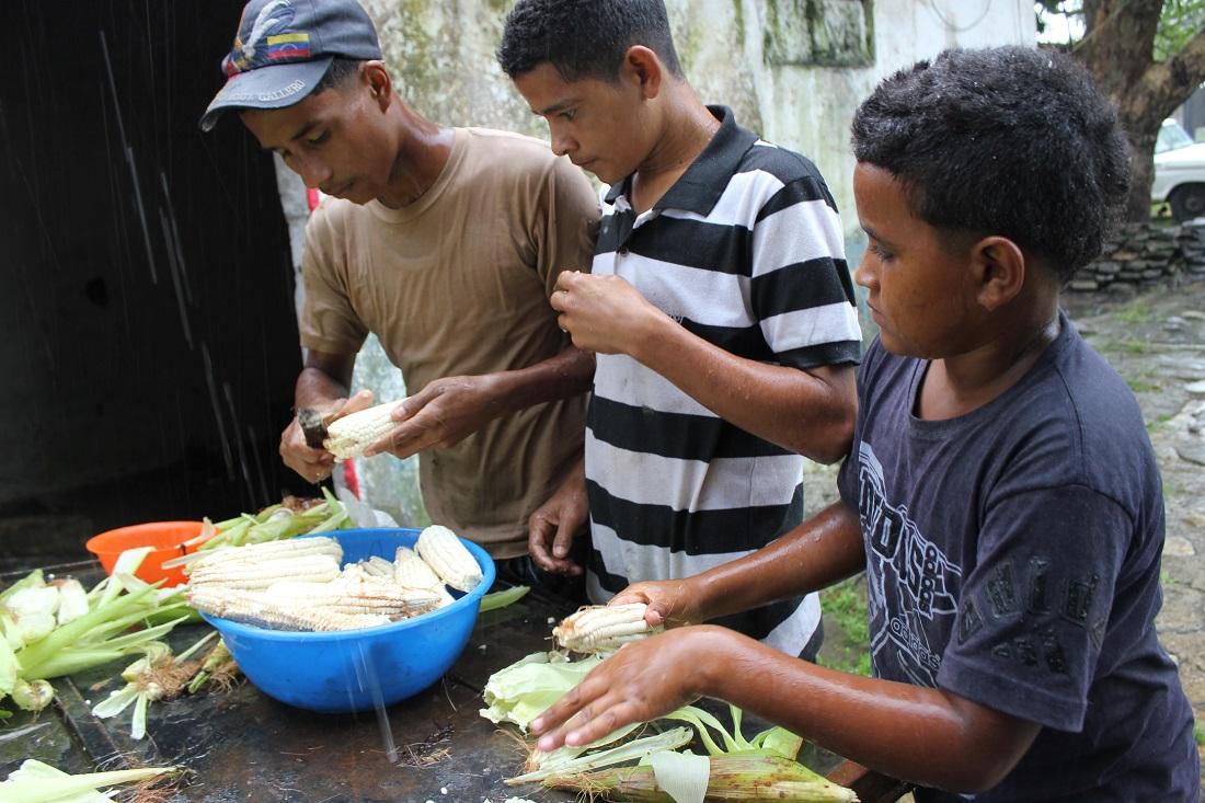 Preparing Corn: Small Family Farms