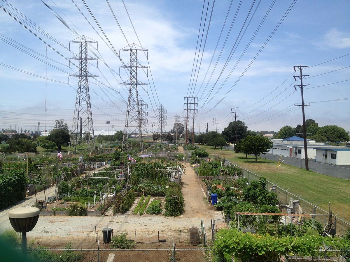 A community garden at Columbia Park in Torrance. 2014 | Courtesy of Angel City Press