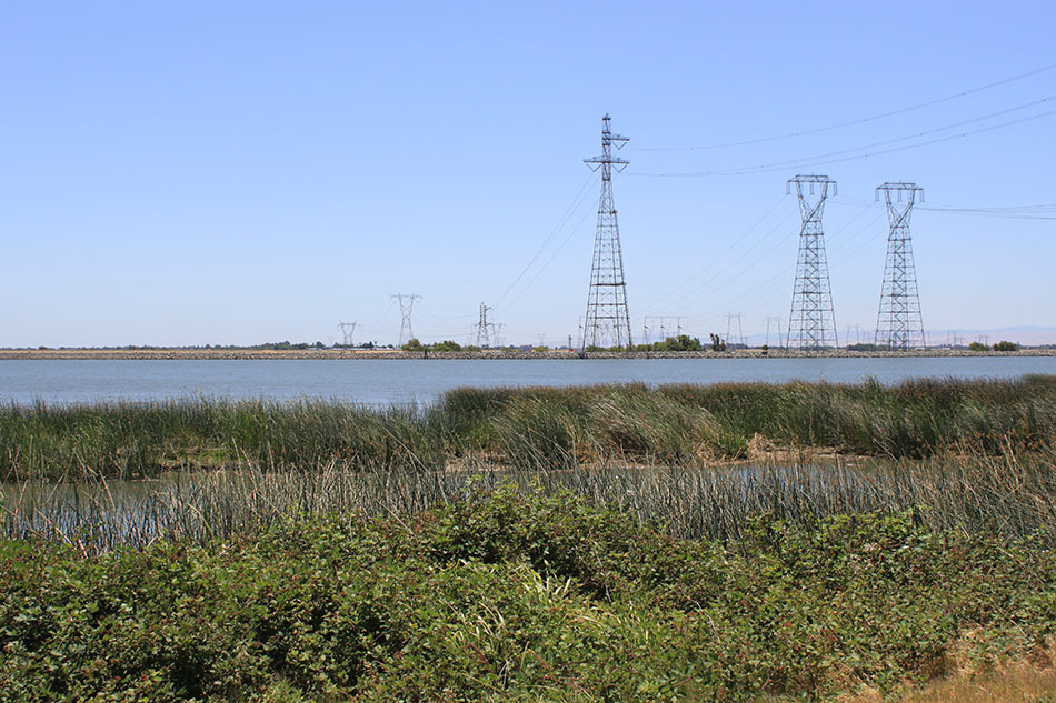 Power Lines across the Delta