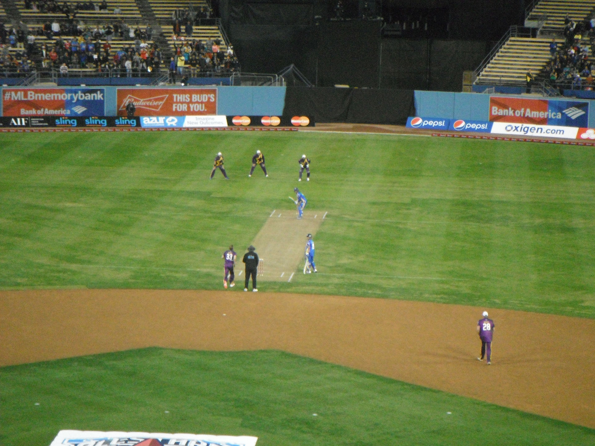 Cricket at Dodger Stadium, November 2015