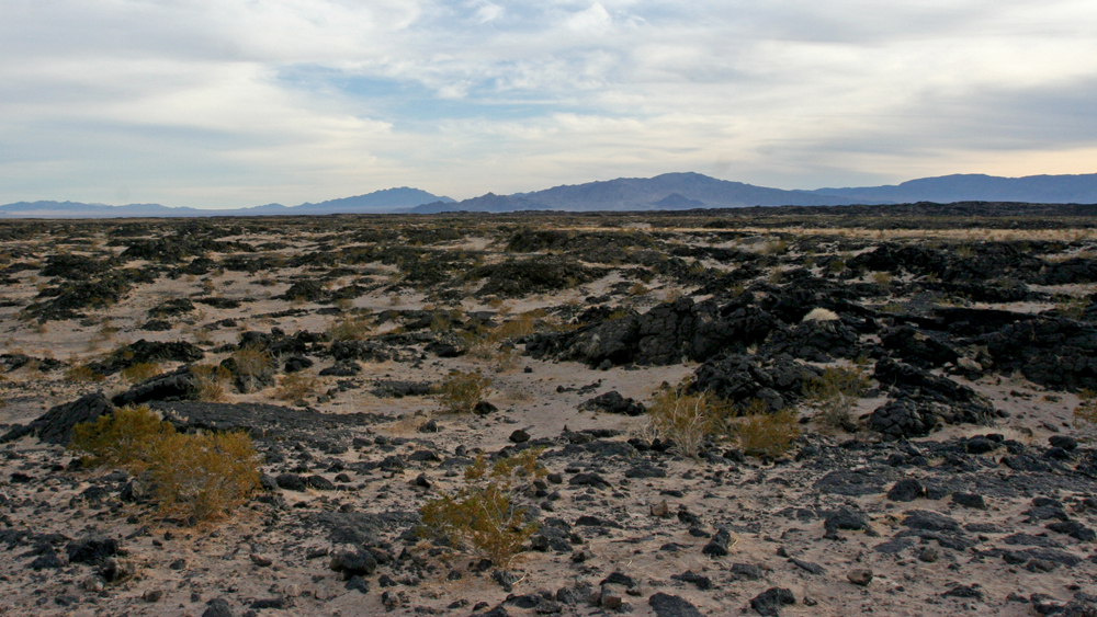 A view eastward across the Amboy lava field | Photo: Chris Clarke