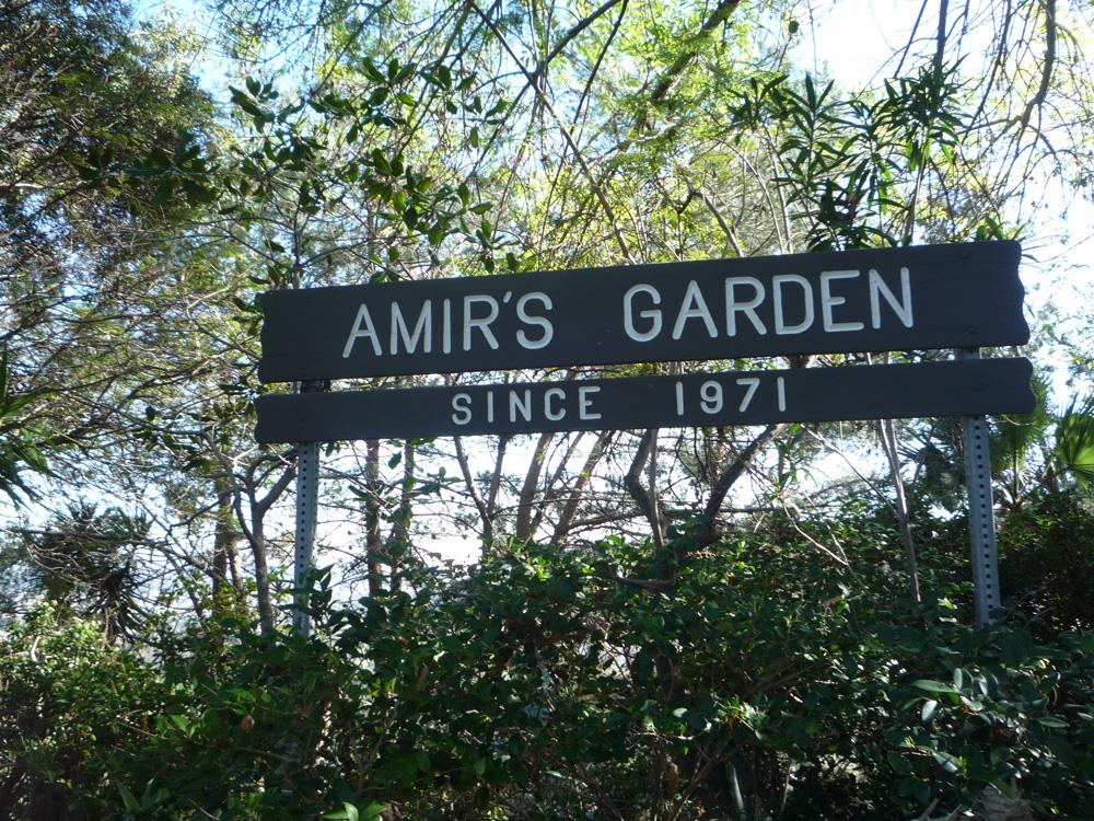 Amir's Garden - Griffith Park