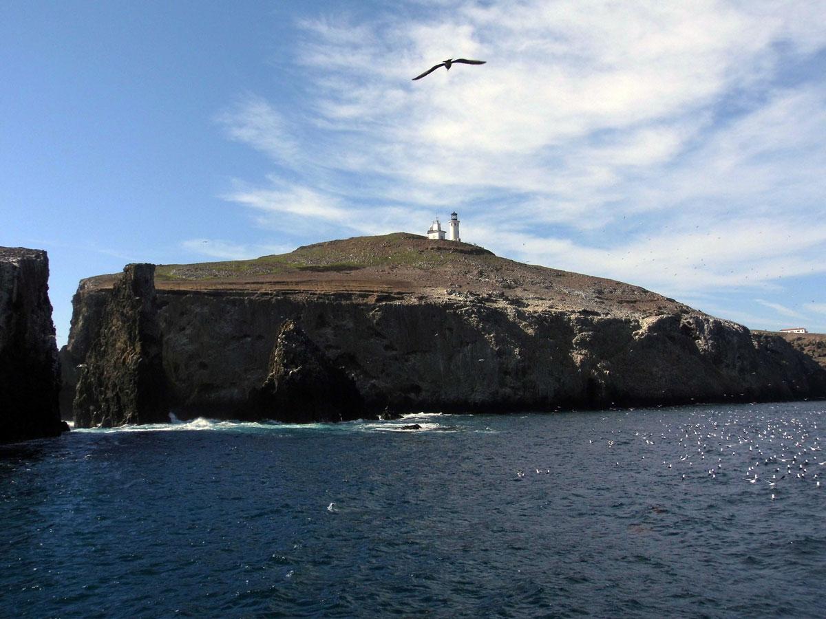 Anacapa Island | Sandi Hemmerlein