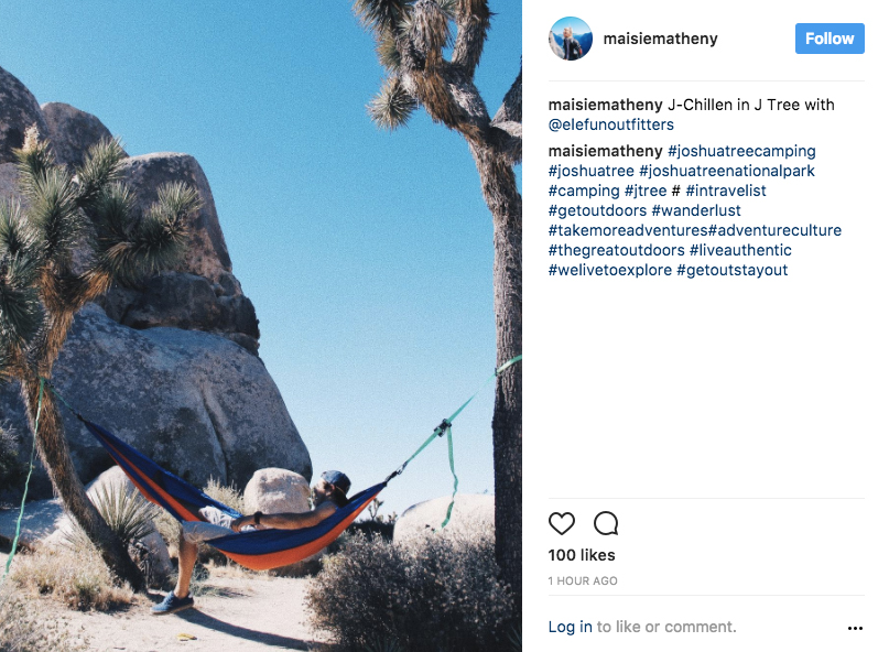 Another illegal hammock user in JTNP | Image: via Instagram