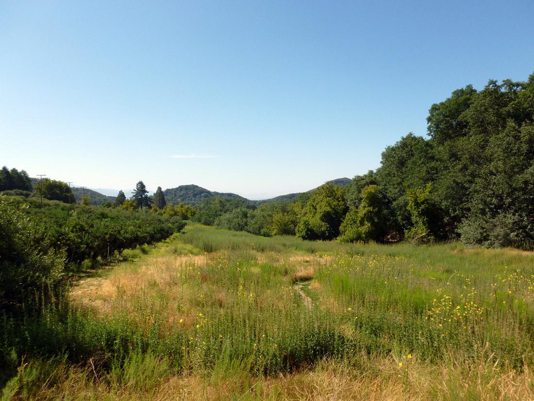 Oak Glen, Apple Picking