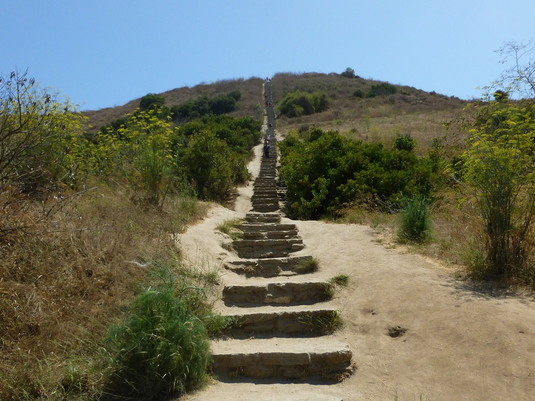 Six Great Stair Treks To Help Work Off Thanksgiving Dinner ...