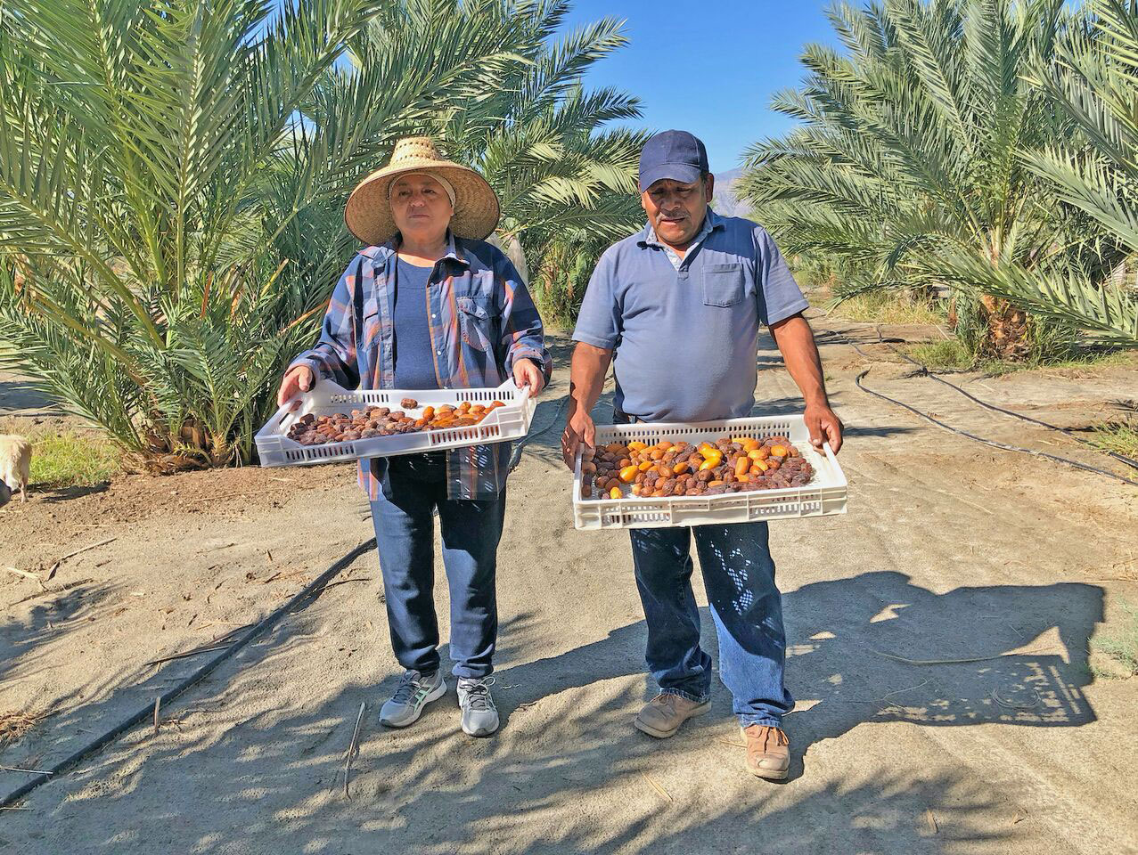 Coachella farmworkers Juana and Santos Barajas