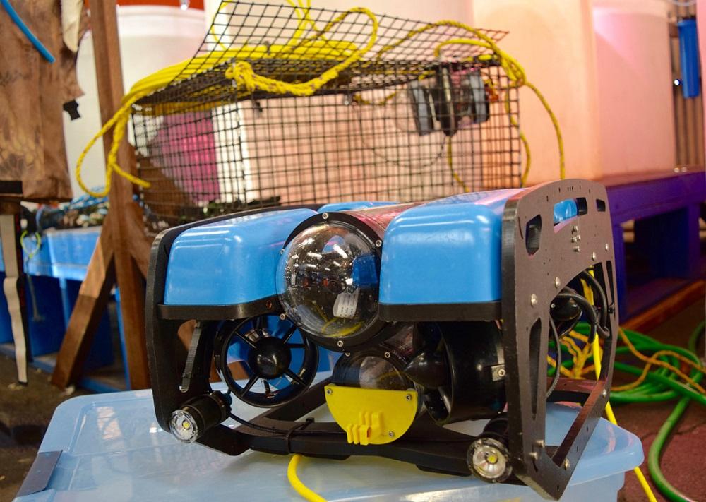 Blue Robotic's mini-ROV used by Catalina Sea Ranch