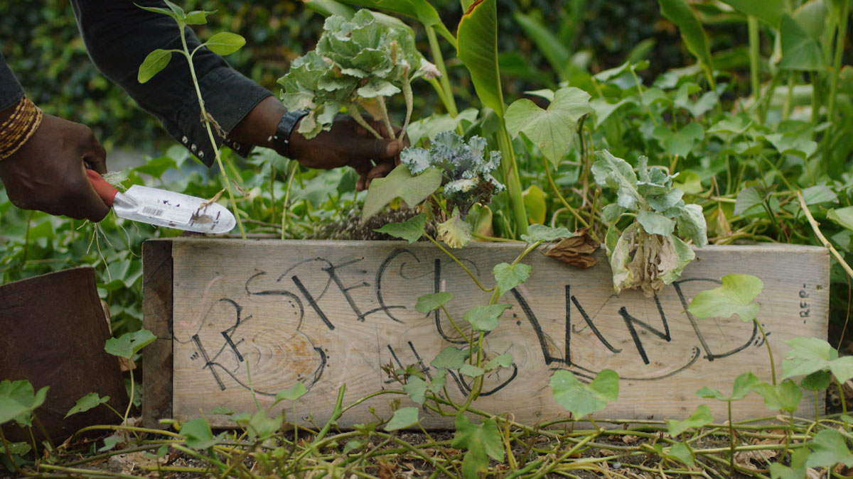"Ron Finley gardening | Still from ""Broken Bread"" Access"
