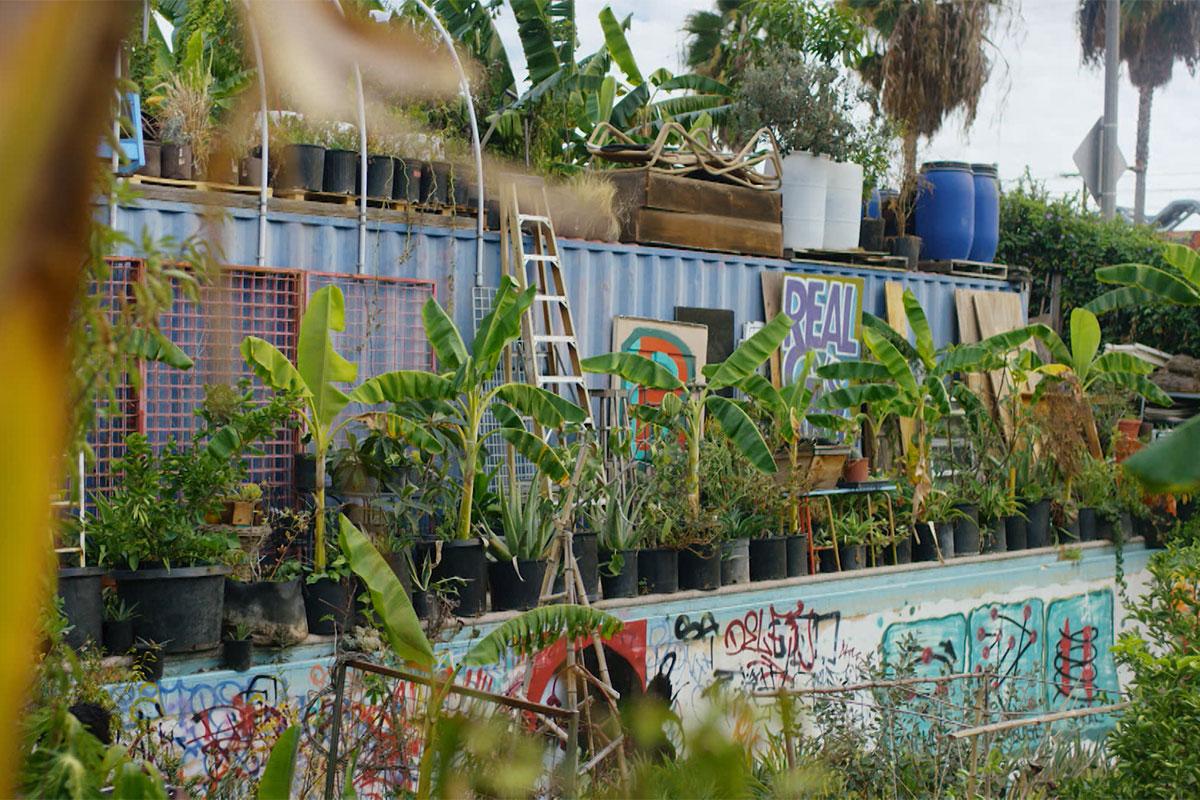 "A peek into Ron Finley's garden.   Still from ""Broken Bread"""