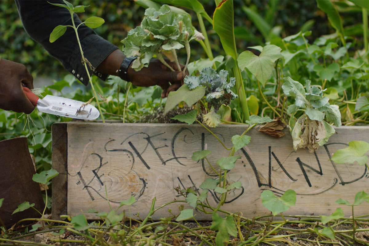 "Ron Finley gardening out of a planter labeled ""Respect the Land"" in his garden. 