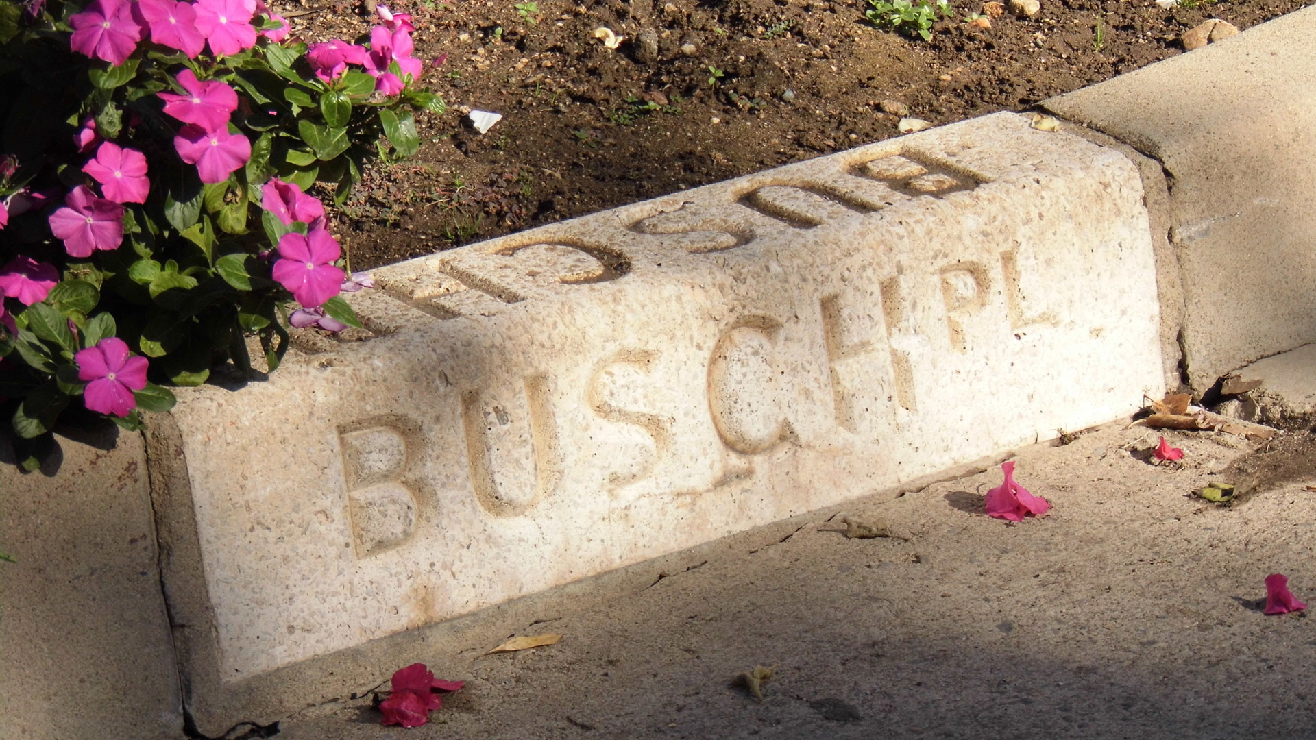 Top Ten Places To Trace The Remains Of Pasadena S Busch