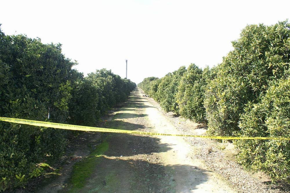 A 2011 crime scene in Tulare County, where one of Jose Martinez's victims was found. | Courtesy of Marion County Sherff's Office via FOIA/Buzzfeed