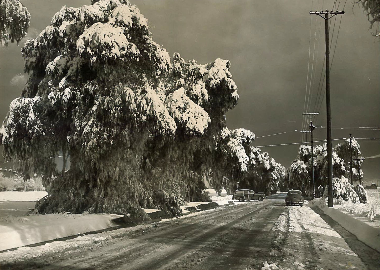 A wintry scene in Canoga Park on Jan. 13, 1949