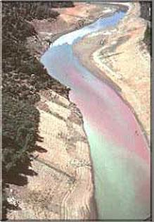 Aerial of the Upper Sacramento post-spill | Photo: CDFW