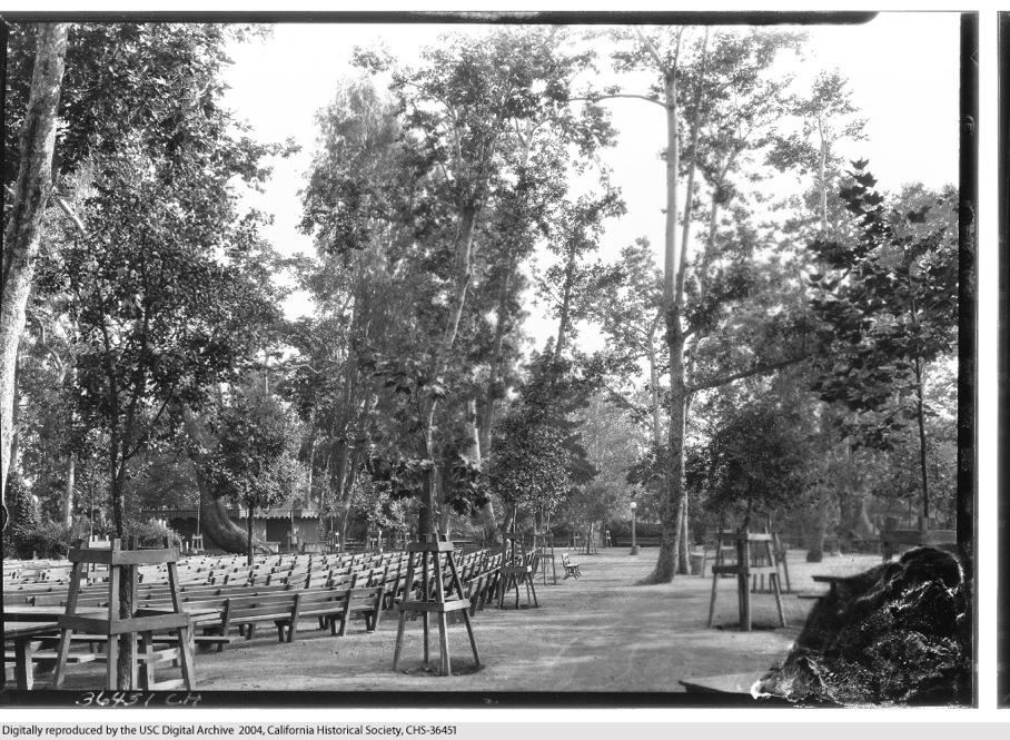 Sycamore Park 9