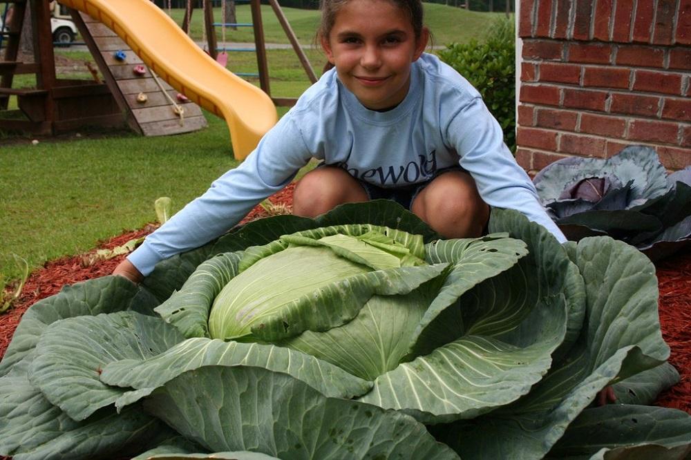 Katie Stagliano w/ Cabbage