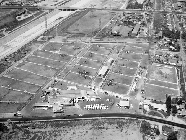 Rockview Milk Farms in Downey, 1957. Photo courtesy of the Kelly-Holiday Collection of Negatives and Photographs – Los Angeles Public Library