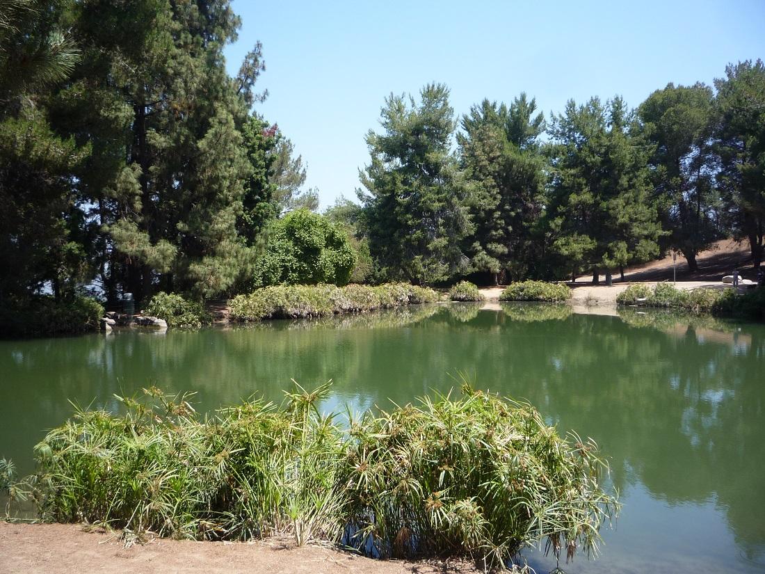Debs Lake (1)