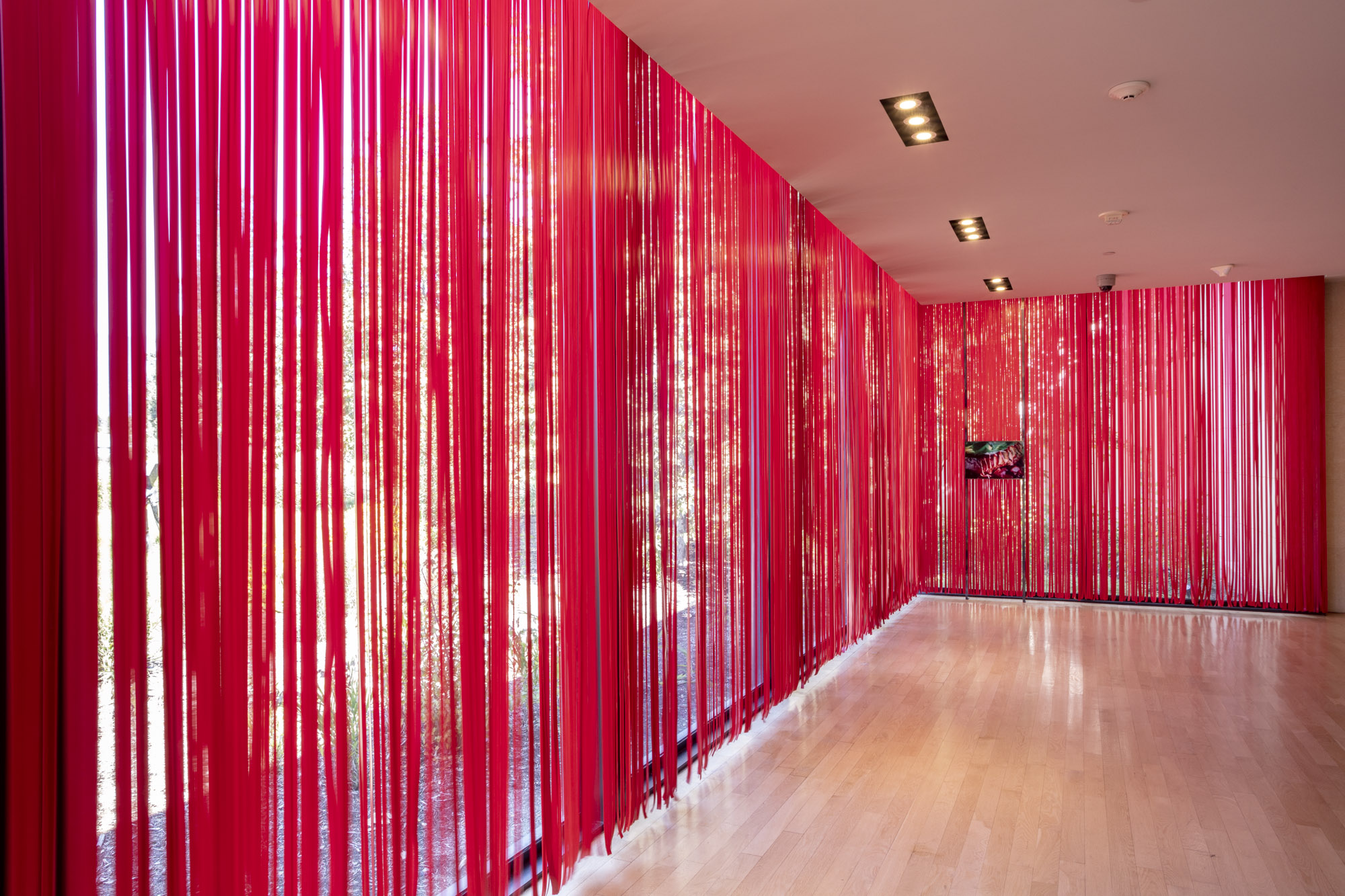 """An installation view of Diane Severin Nguyen's work at """"Made in L.A. 2020: a version"""" at The Huntington Library, Art Museum, and Botanical Gardens, San Marino. 