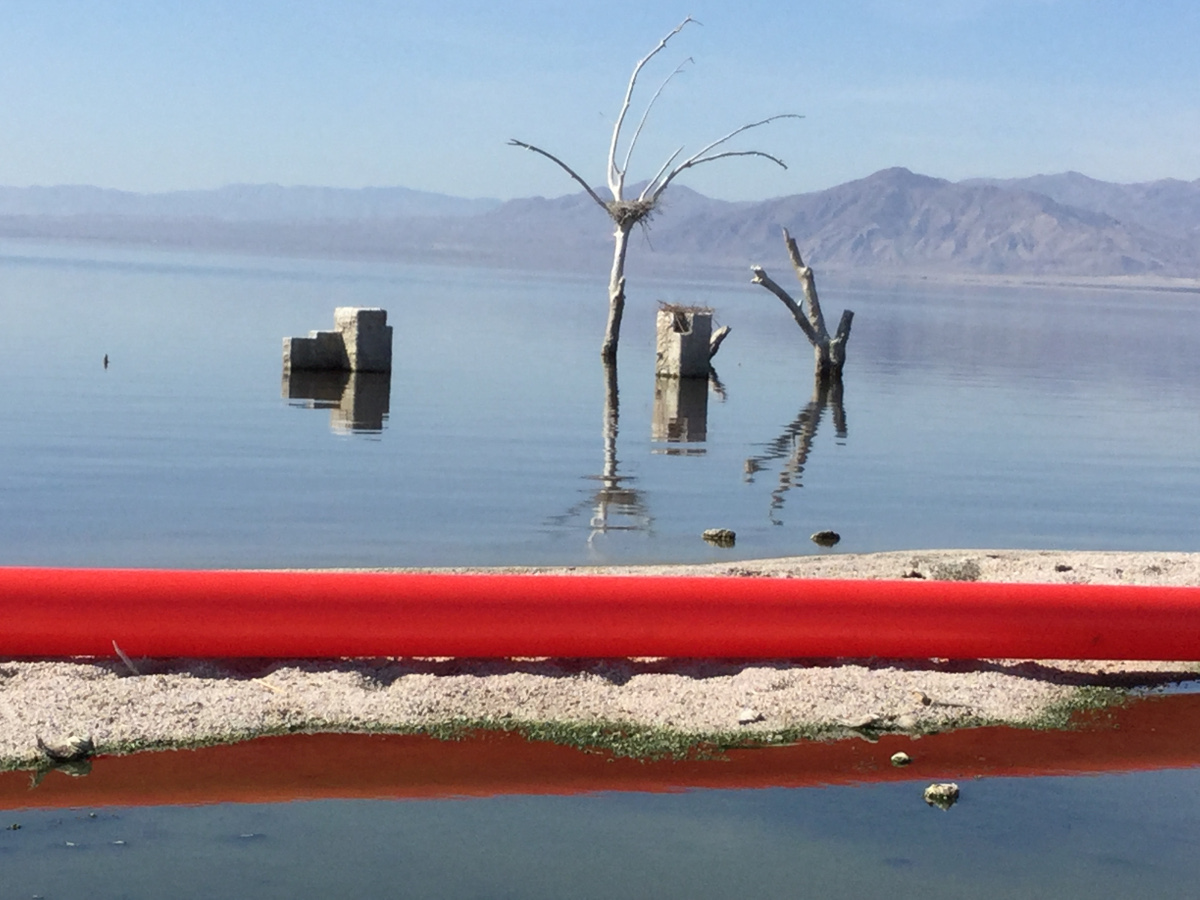Doron Gazit, Red Line Project at the Salton Sea