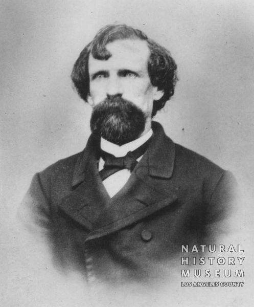 Joseph Dye